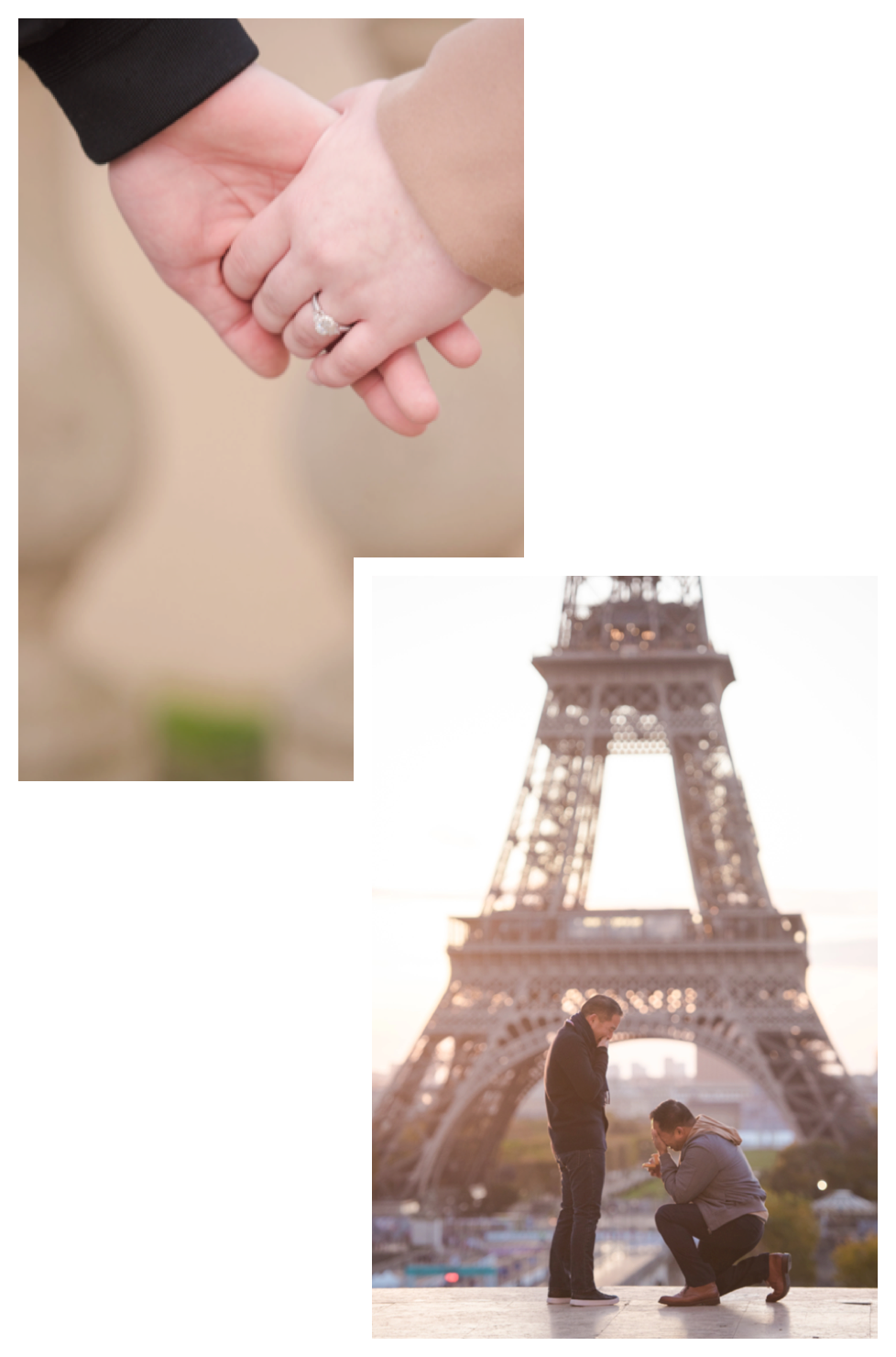 Paris Proposal Photos - How It Works
